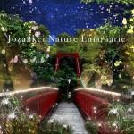 6月1日~10月31日 Jozankei Nature Luminarie 開催