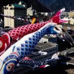 4月15日~5月8日 定山渓温泉渓流鯉のぼり 開催