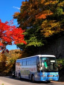 イベント 紅葉かっぱバス01